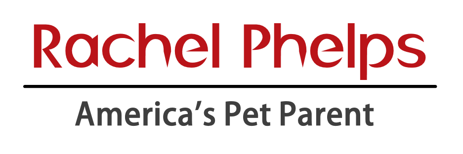 Rachel Phelps | America's Pet Parent